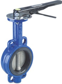 Caste Iron DN Butterfly Valve 10 Bar